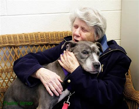 'Match made in heaven': Elderly nuns adopt aging pit bull